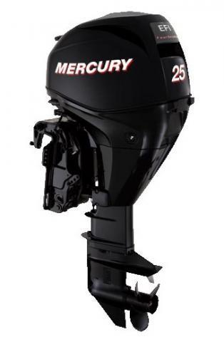 Mercury F25ML EFI