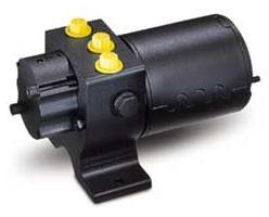 Raymarine Тип 1 24В