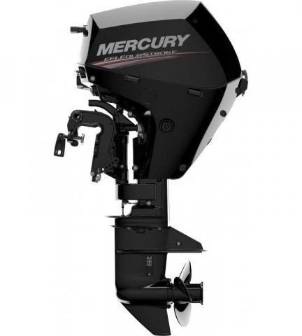 Mercury F 15 EL
