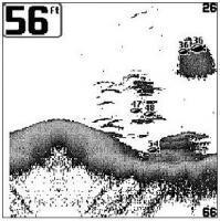 Humminbird 550